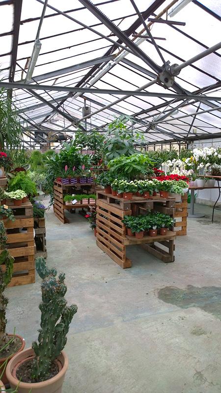 Le Corti Giardinerie